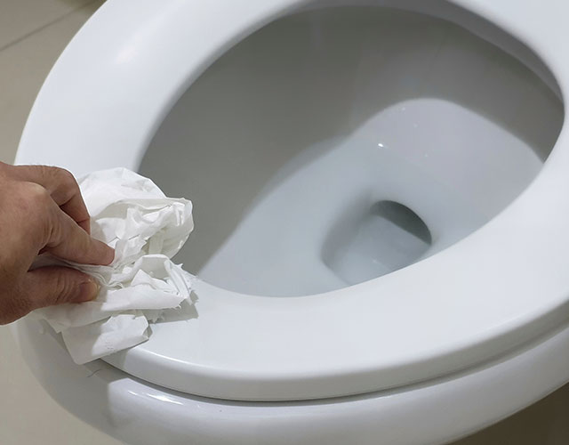 Absorbent and Hygienic